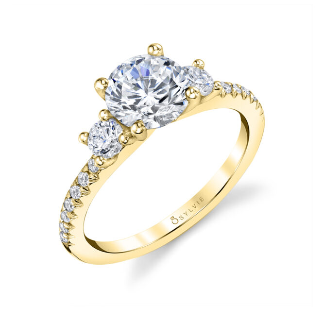 3 Stone Engagement Ring with Side Stones - Amore